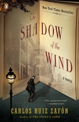 shadow of the wind.jpg